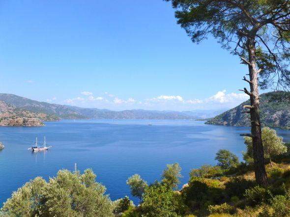 Utsikt över Seagull Bay